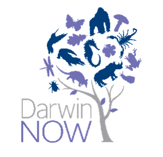 Especial Darwin Now en Bs As